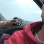 Cannabis_Centro_LiberaMente_Genova